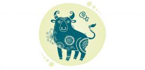 Бык - Восточный гороскоп на 2018 год Желтой Земляной Собаки