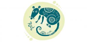 Восточный гороскоп на 2018 год Желтой Земляной Собаки для Крысы